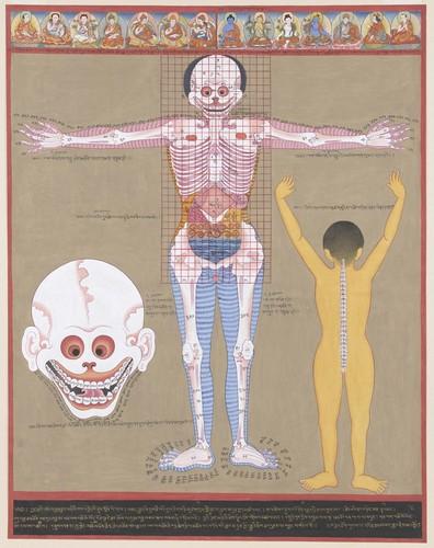 Yogacitynyc Article On Body Spirit Tibetan Medical Paintings
